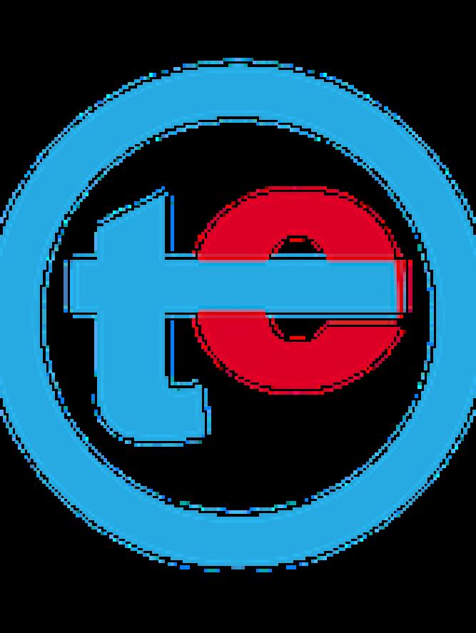 TechEconomy.ng Logo alone